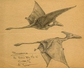 "two ""pterodactyl"" ropens seen in Cuba in 1971"
